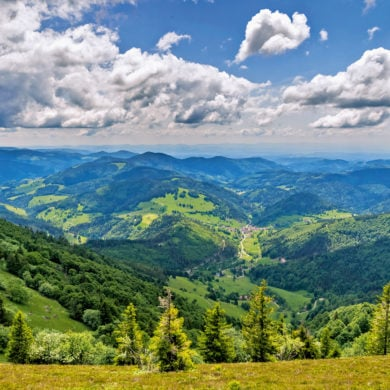 Panorama-Ausblick auf den Südschwarzwald