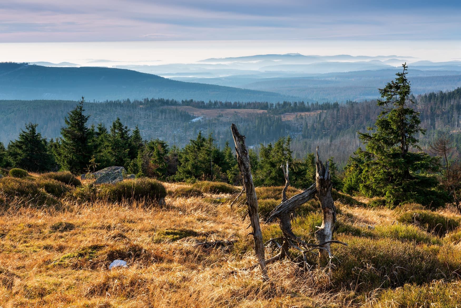 Aussicht vom Brocken im Harz im Herbst