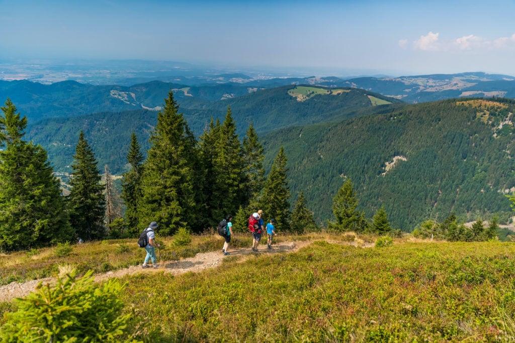 Wanderer hoch oben unterwegs im Südschwarzwald bei Sonnenschein
