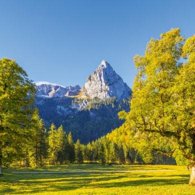 Ein Berg im Ammergebirge in Bayern hinter grüner Wiesenlandschaft