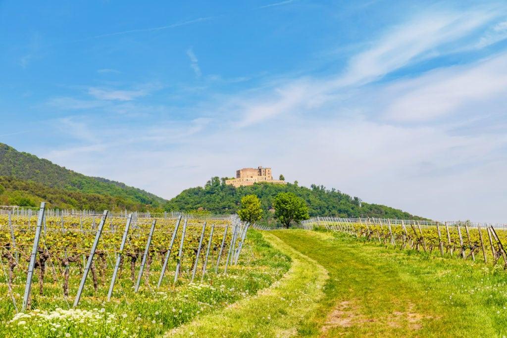 Ein geschichtsträchtiger Ort für Deutschland ist das Hambacher Schloss