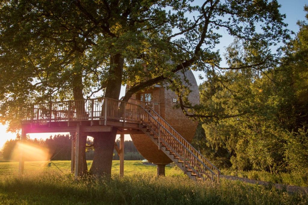 Ovales Luxus-Baumhaus auf einem Feld im Allgäu