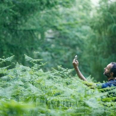 Mann im Wald auf der Suche nach einem Signal fürs Geocaching in Deutschland