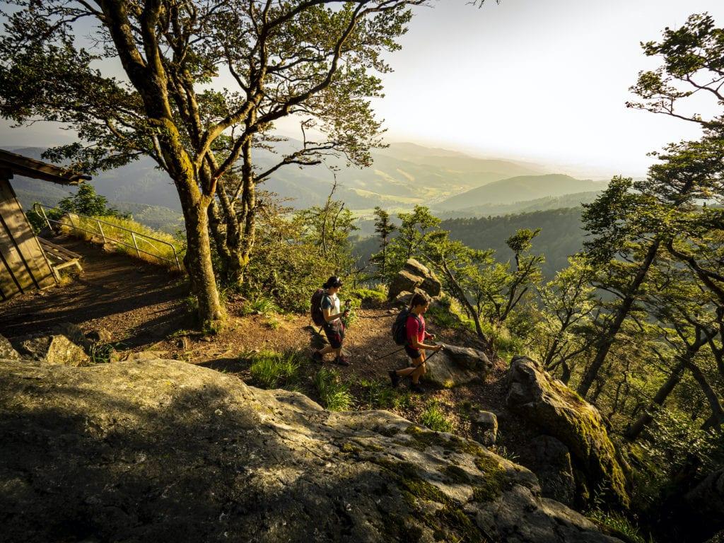 Zwei Wanderer auf dem Zweitälersteig auf dem Weg bergab