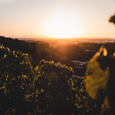 Sunset in Baden-Württemberg, Germany