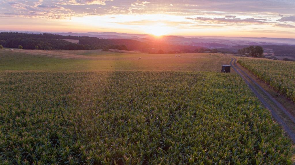 So schön ist das Saarland! Hier ein Sonnenuntergang in der Natur