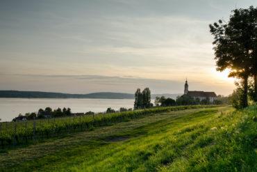 Kloster Birnau am Bodensee in Baden-Württemberg. Im Vordergrund die Weinberge.