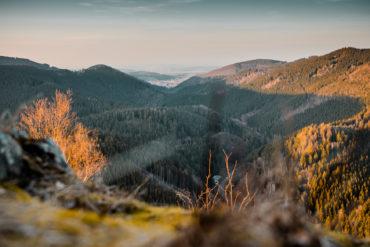 Nationalparks in Deutschland: Im Nationalpark Harz kann man die schöne Natur Deutschlands erleben