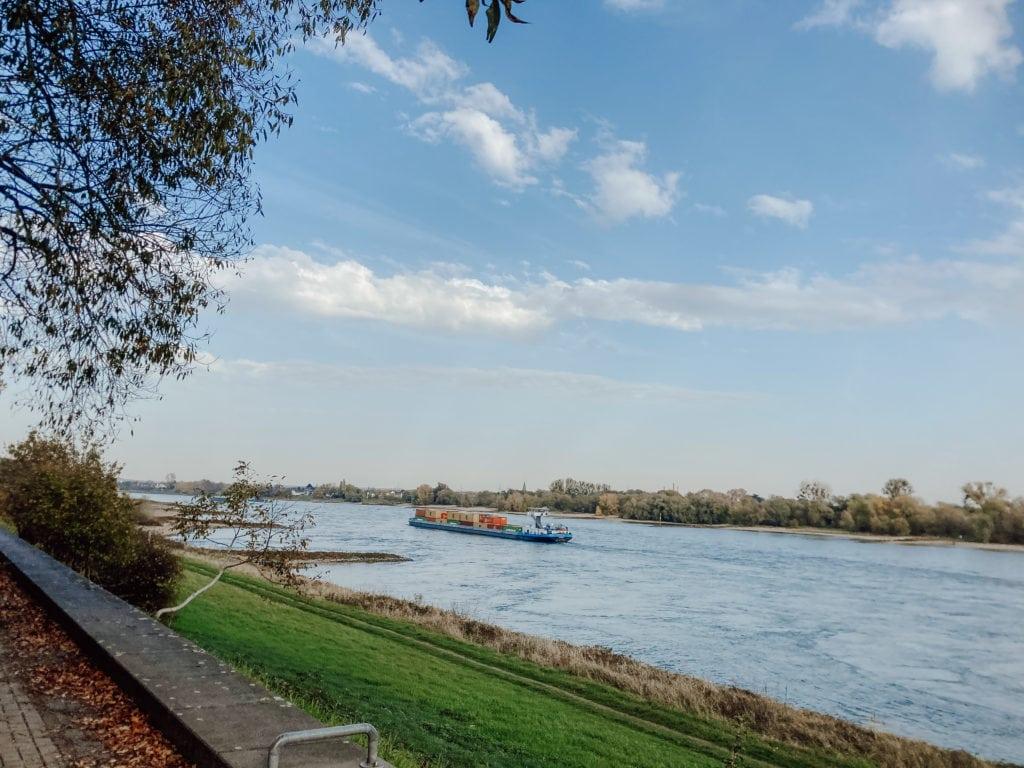 Rhein bei Zons
