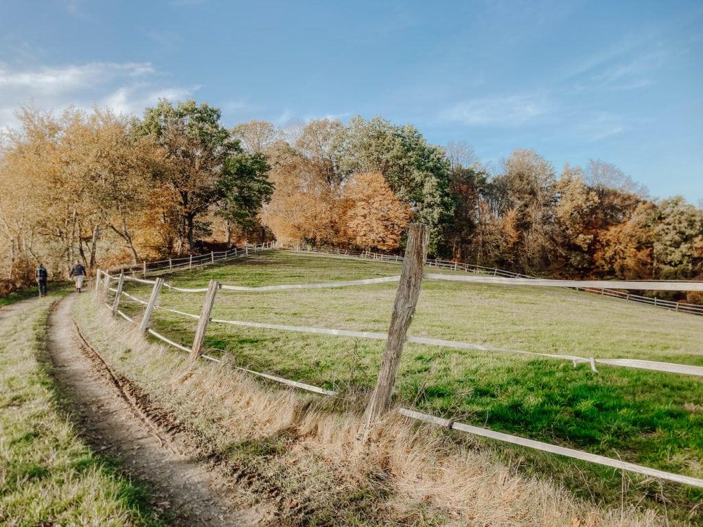 Weite Felder und blauer Himmel: Ein Ausflug ins Bergische Land