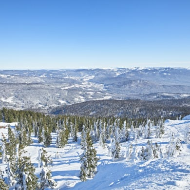 Winter im Bayrischen Wald Grosser Arber