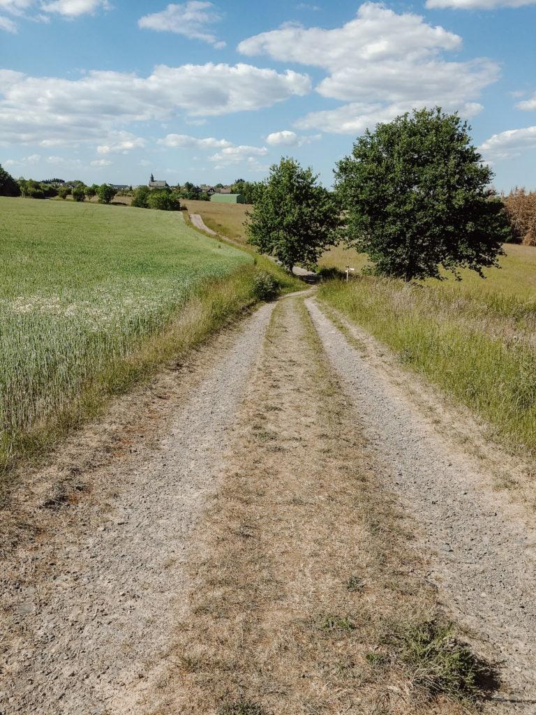 Feldweg im Rhein-Sieg-Kreis