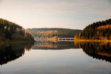 Blick auf einen stillen See im Nationalpark Harz