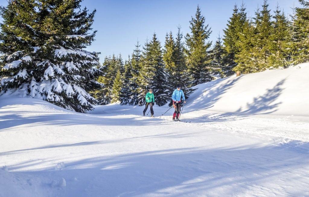 Skilangläufer in Winterlandschaft