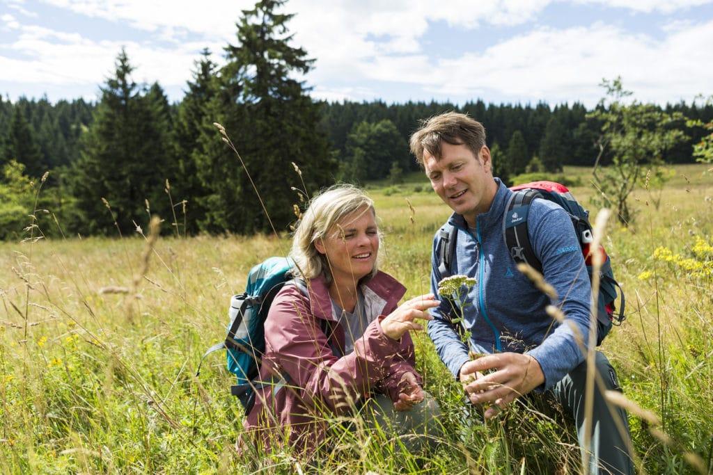 Zwei Wanderer begutachten Kräuter im Thüringer Wald
