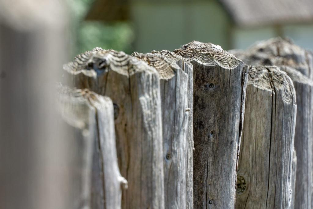 Nahaufnahme von Holzpfählen