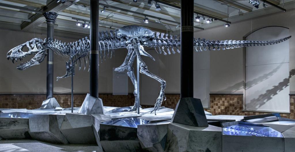 Dinosaurier-Skelett in Museum in Berlin