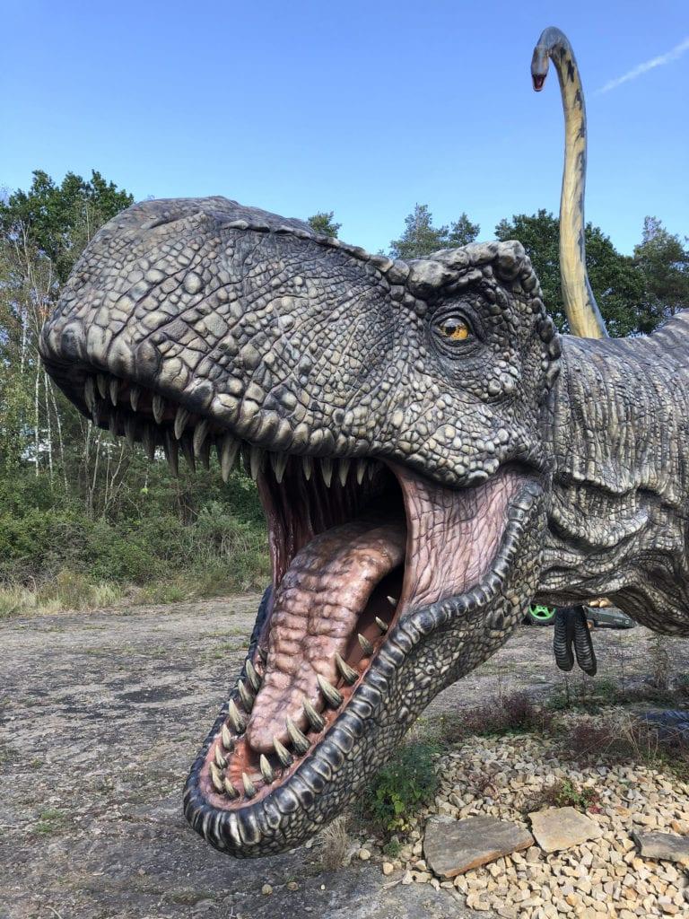 Dinosaurier in Deutschland könnt ihr im Dinosaurier Park in Münchehagen entdecken