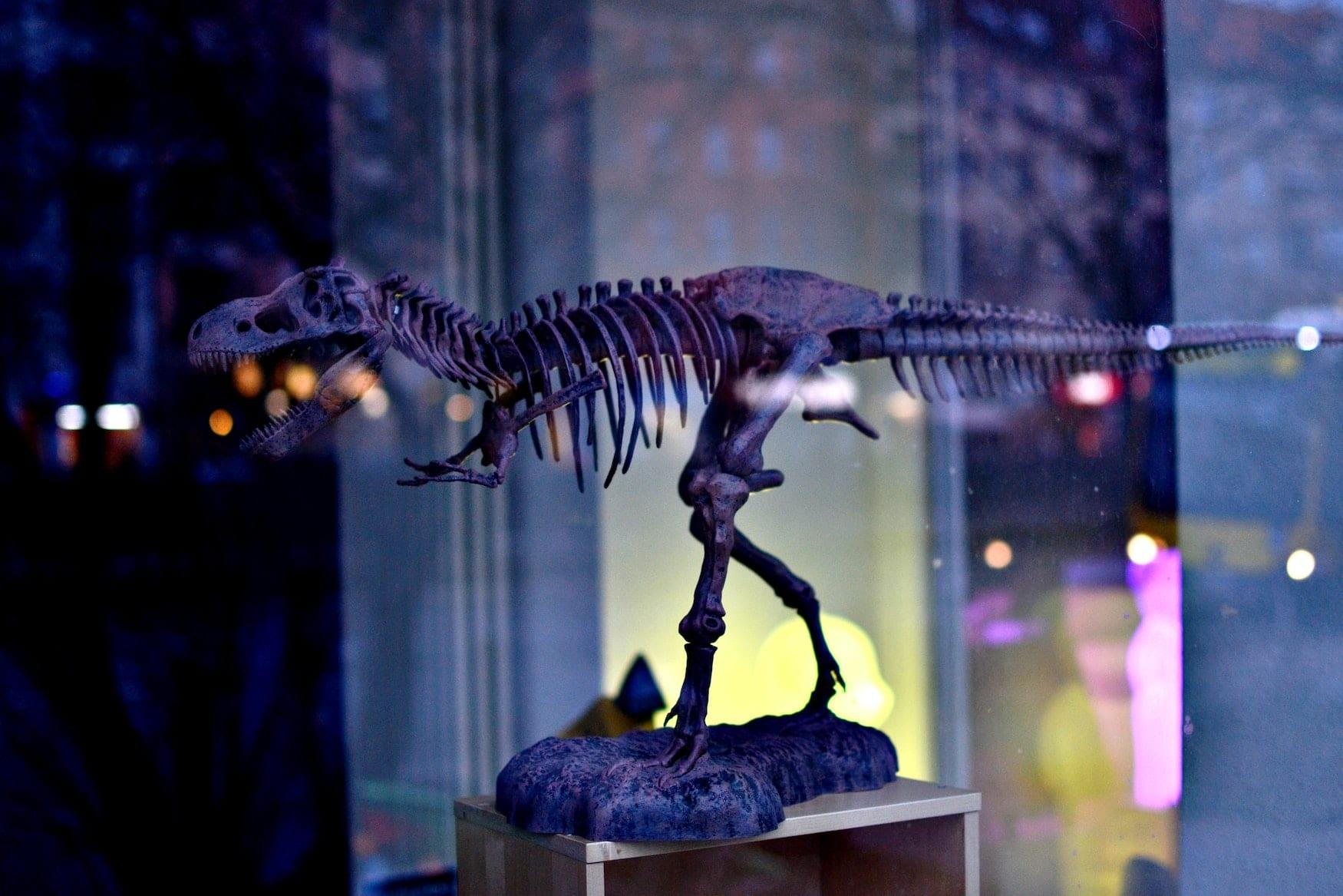 Dinosaurier in Deutschland