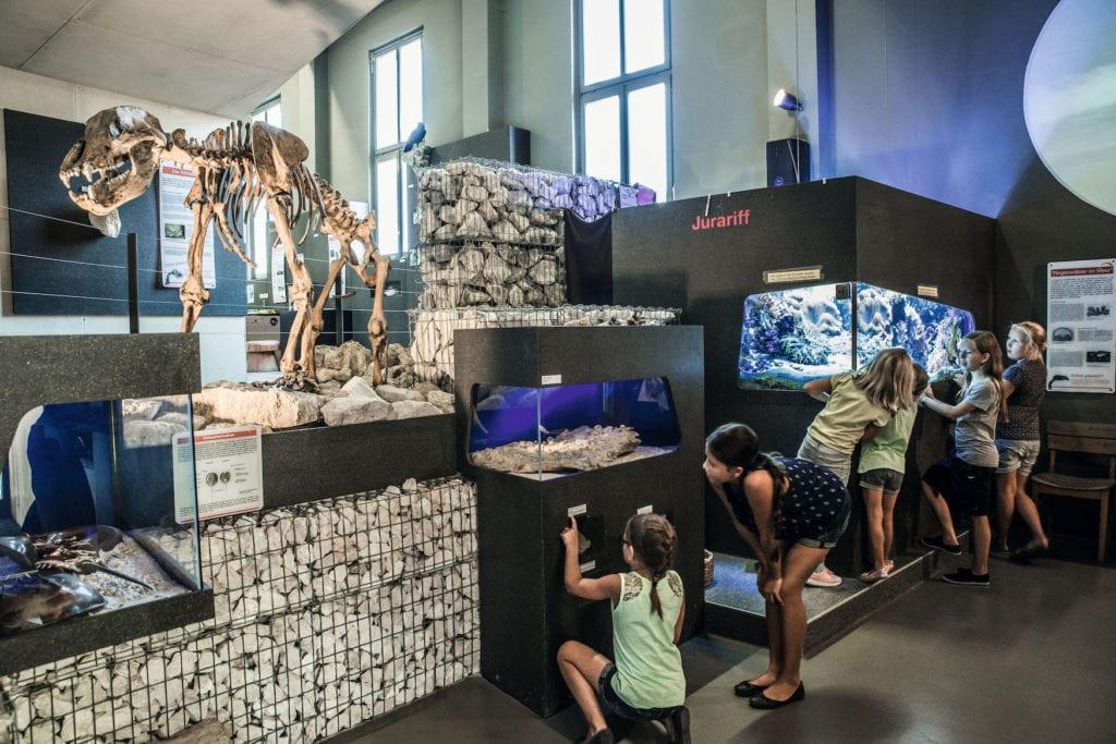 Kinder bestaunen Ausstellungen im Archäopark Vogelherd