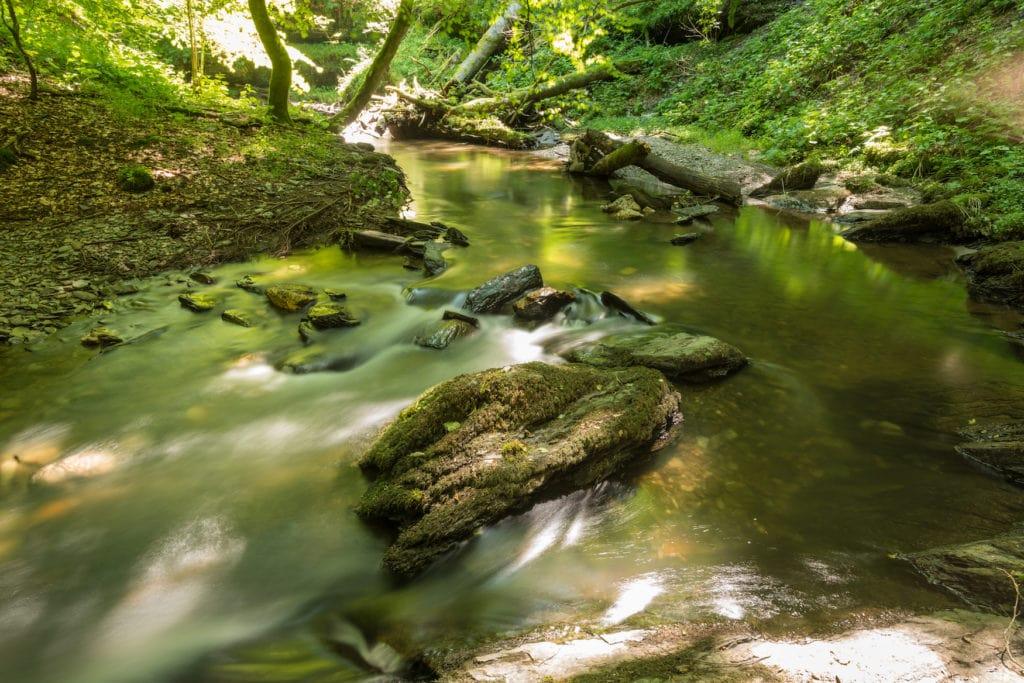 Die Baybachklamm ist eine der Sehenswüridkgieten in Rheinland-Pfalz, die ihr euch ansehen solltet