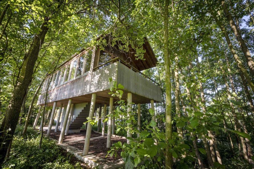 Baumhaus des Hofgut Hafnerleiten