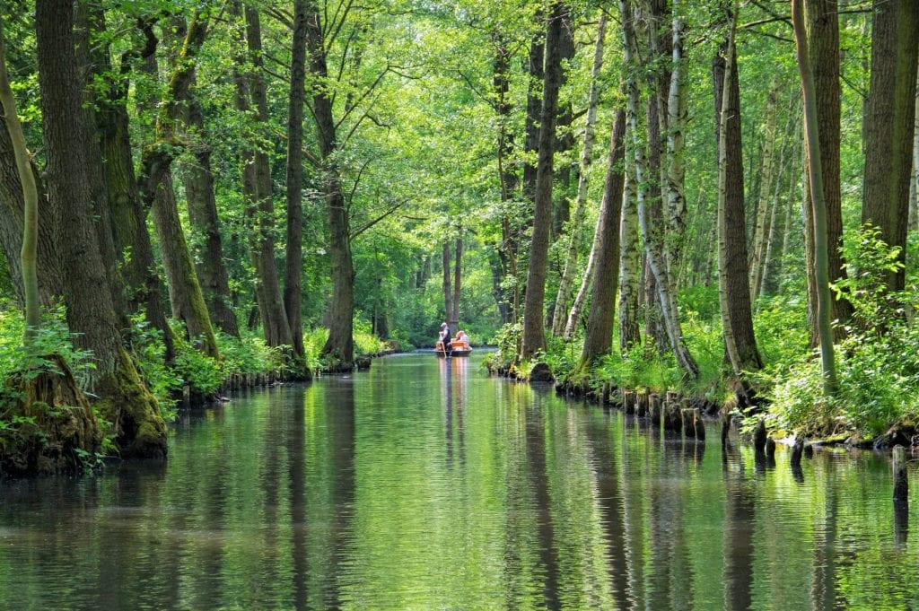 Einer der schönsten Fernwanderwege in Deutschland führt durch den Spreewald