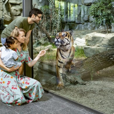 Family standing in front of a Sumatran tiger's disc at Tierpark Berlin