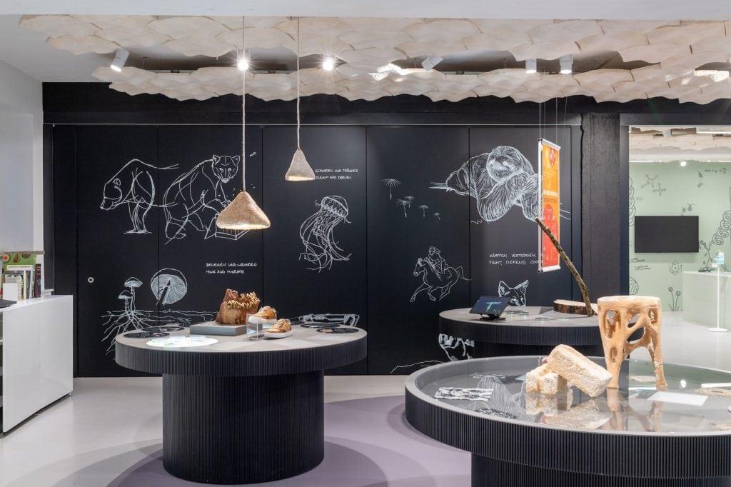 Das neue Biotopia-Lap im Naturkundemuseum Bayern