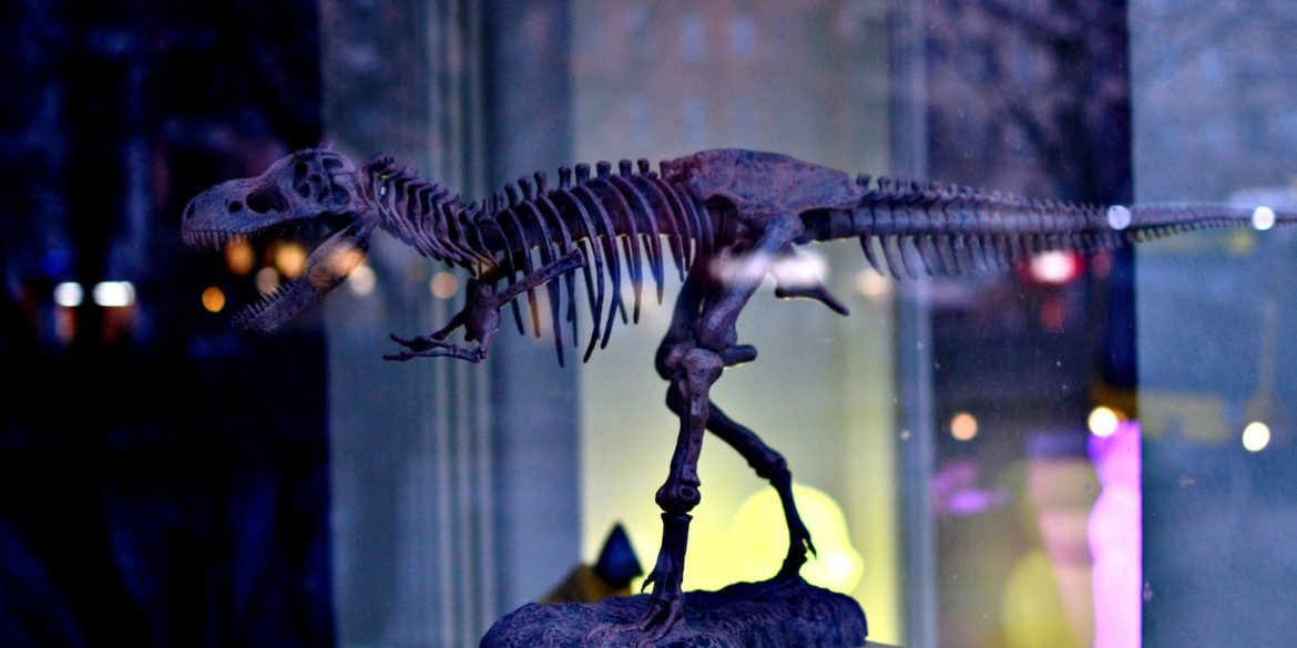 Dinosaurs in Germany