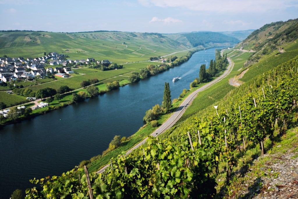 Weinfelder entlang des Moseltals auf dem Moselsteig, einem Fernwanderweg in Deutschland