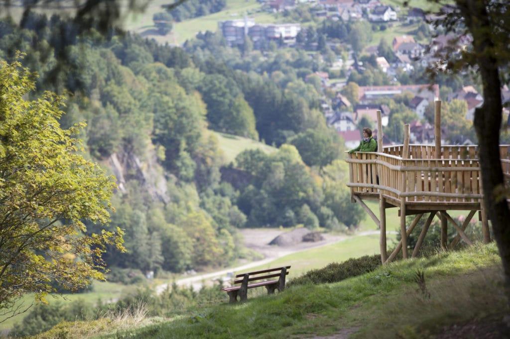 Allmandblick beim Wandern in Baiersbronn nahe des Nationalpark Schwarzwald