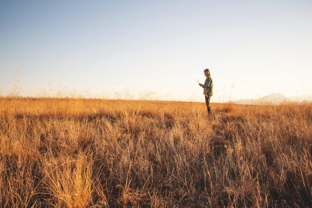 Autorin Franziska Consolati in einem Feld bei Sonnenuntergang
