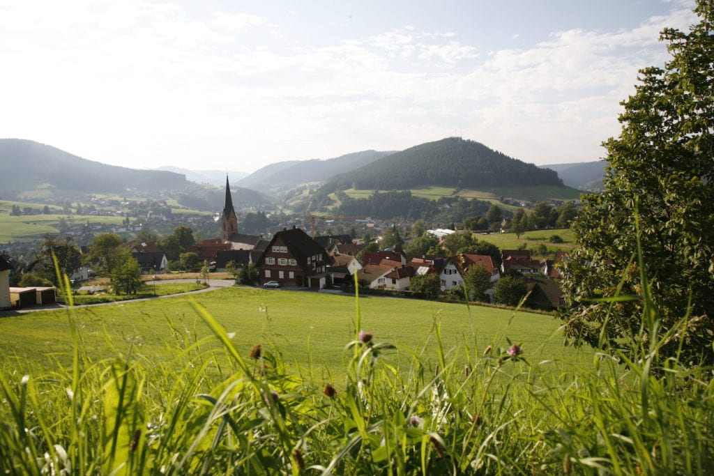 Unser Tipp für den Frühling: Wandern in Baiersbronn