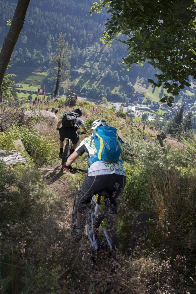 Wandern und Mountainbike rund um Baiersbronn