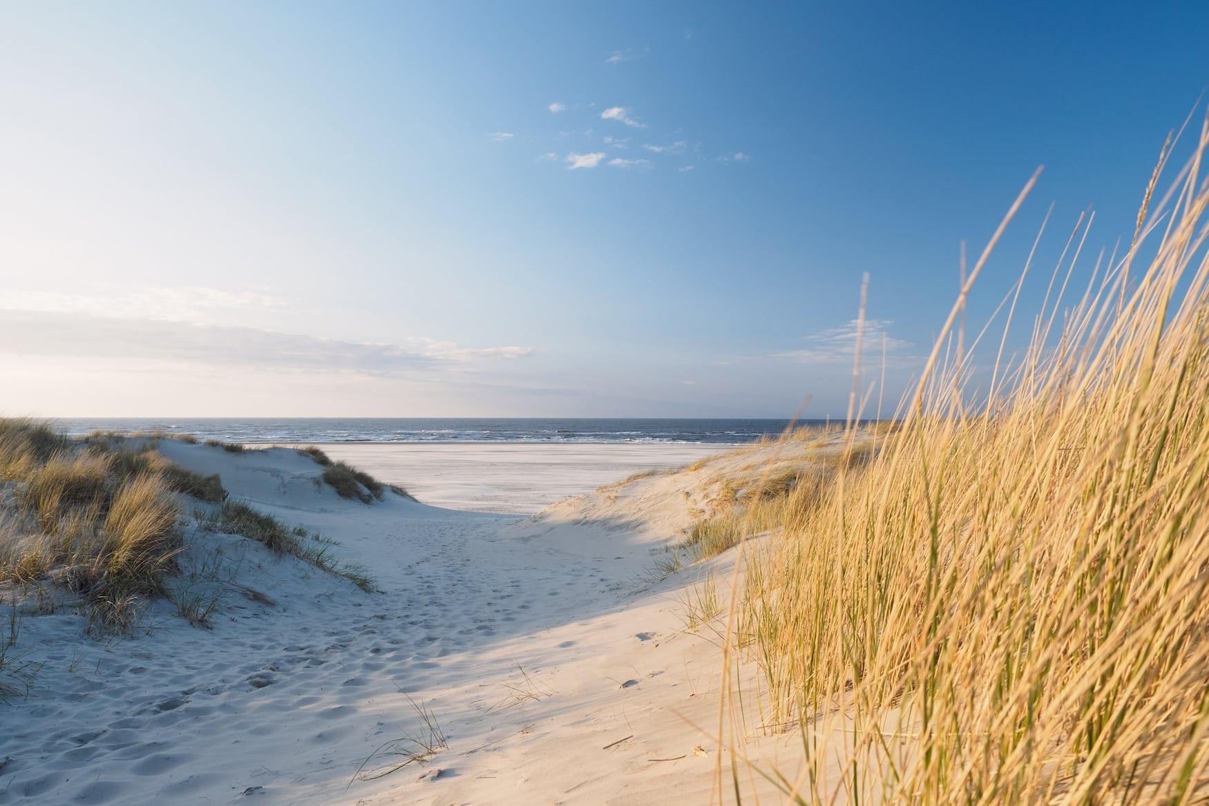 Dünen an einem der besten Strände in Deutschland an der Nordsee
