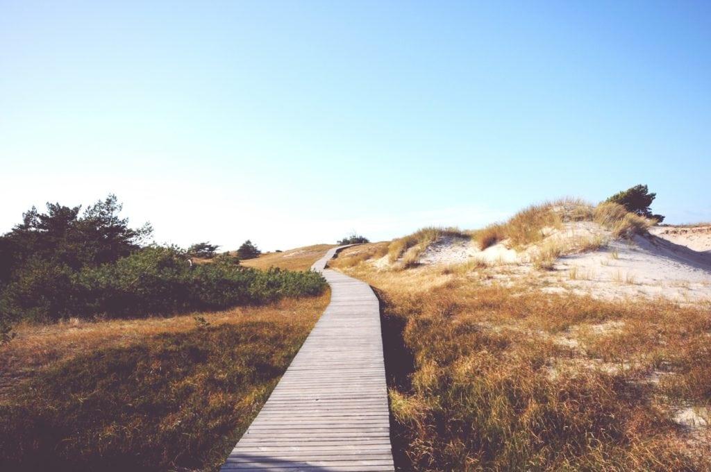 Holzweg führt zwischen Dünen an Strand