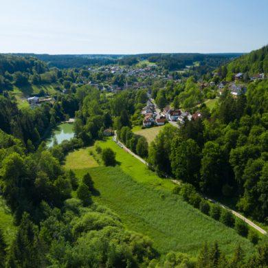 Blick auf Mühlenweiher im Schwarzwald
